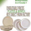 Disposable clamshell boxes Ecopride Dubai bagasse biodegradable tableware