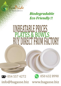 Disposable clamshell boxes Ecopride Dubai bagasse biodegradable tableware