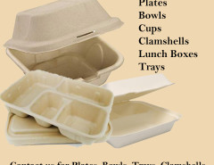 Ecopride disposable lunch and dinner boxes