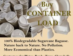 disposable biodegradable dinner plates special offer by Ecopride dubai