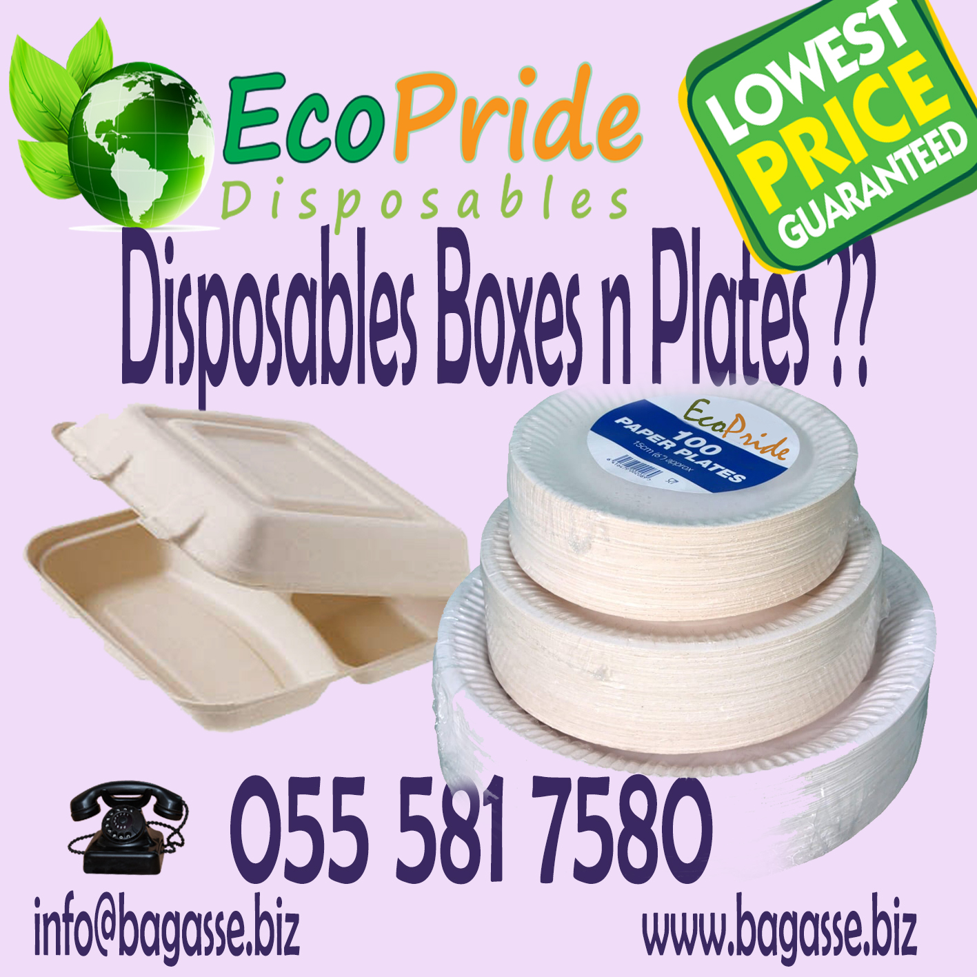 10 inch disposable plates dubai