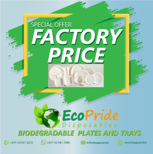 disposable food packs disposable take away supplies disposable paper plates suppliers disposable take away manufacturers disposable bagasse plates disposable bagasse plates disposable bagasse bowls, clamshell boxes